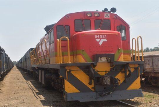 Maize Train